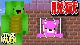 ピンクのクマ死す【マイクラ脱獄 第6話】