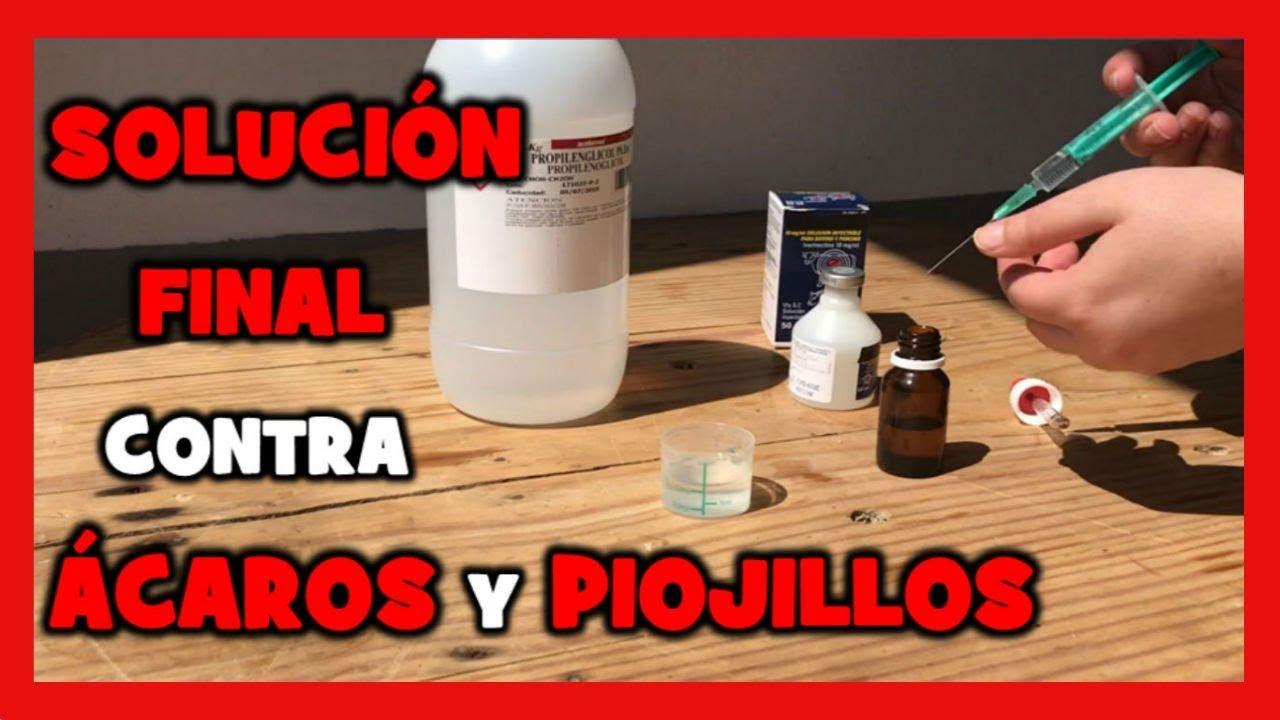 Insecticida Casero Para Eliminar Piojillos Y Acaros Como Hacer Pulmosan Casero Para Pajaros Youtube