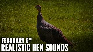Video Turkey Calling Tips - How to Sound Like a Live Hen | Spring Thunder download MP3, 3GP, MP4, WEBM, AVI, FLV Agustus 2018