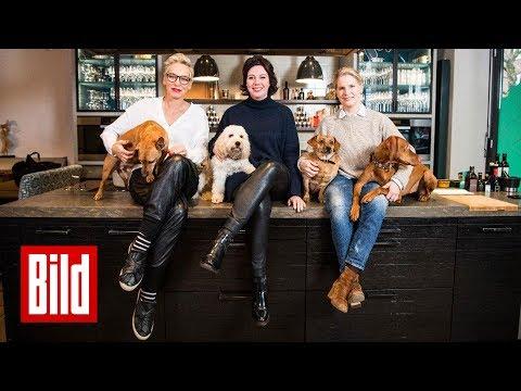 Was können Hunde besser als Männer? Bärbel Schäfer, Ildikó von Kürthy & Cornelia Poletto