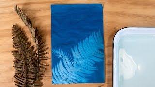 How to Make a Sun Print | Sunset