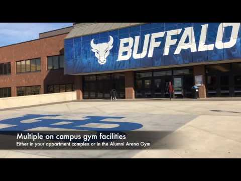 VU students on exchange - University at Buffalo USA