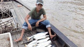 Trải nghiệm thú vị - giăng câu bắt cá bông lau ở Trà Vinh