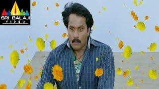 Maryada Ramanna Movie Sunil Introduction Scene   Sunil, Saloni   Sri Balaji Video