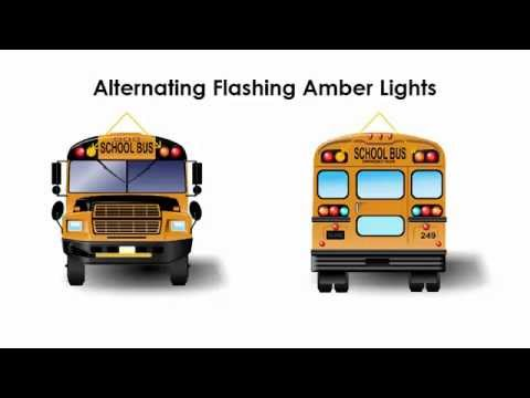 School Bus Stopping Procedures from another Vehicle