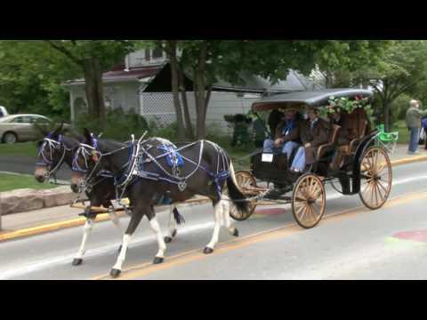 2016 Strawberry Festival Horse & Carriage Parade Youtube