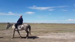 �������� ���� Моя поездка на лошади на рыбалку ������