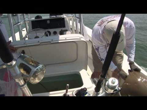 Worlds Strongest Man Competitor battles Giant Goliath Grouper!