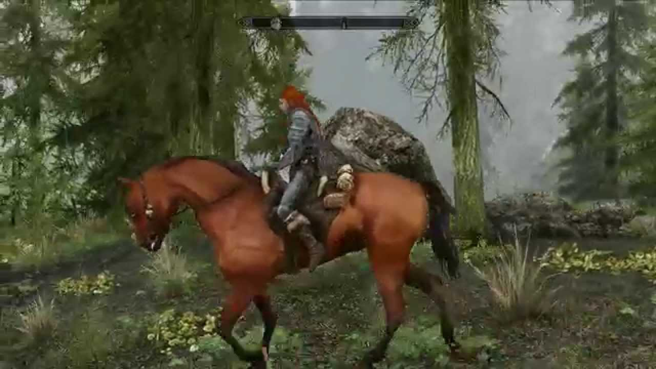 Skyrim : Frost and Shadowmere Horses by Kenway