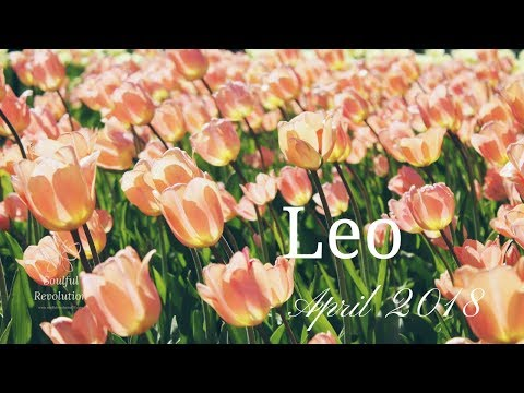 This person will unlock true love for you, LEO. April Monthly General Reading