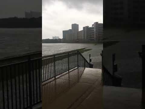 MD Anderson under water Hurricane Harvey