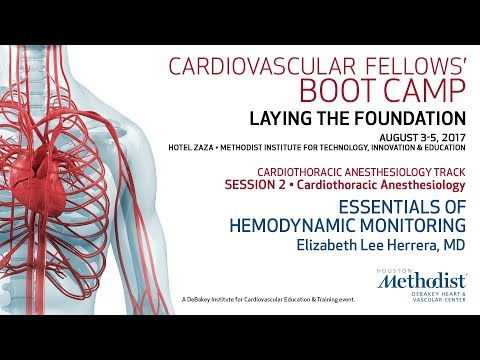 Essentials Of Hemodynamic Monitoring (Elizabeth Lee Herrera, MD)