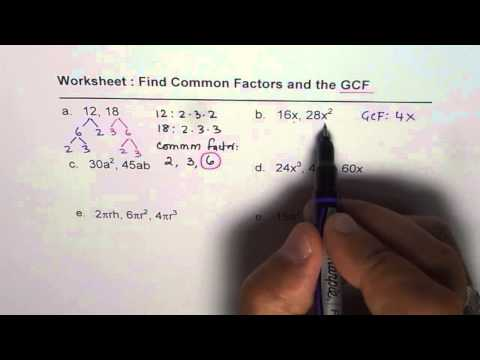 Worksheet for Common Factors and GCF of Polynomials