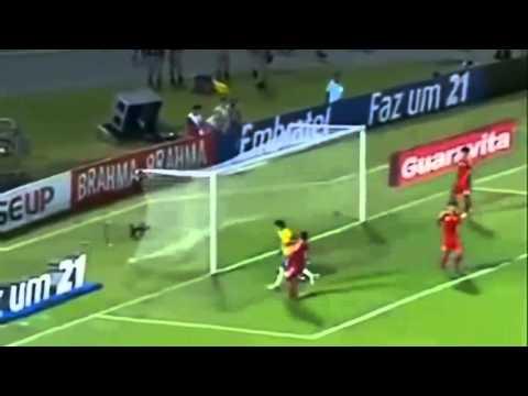 Brazil ● 2014 Fifa World cup in Brazil ● Seleção ● HD