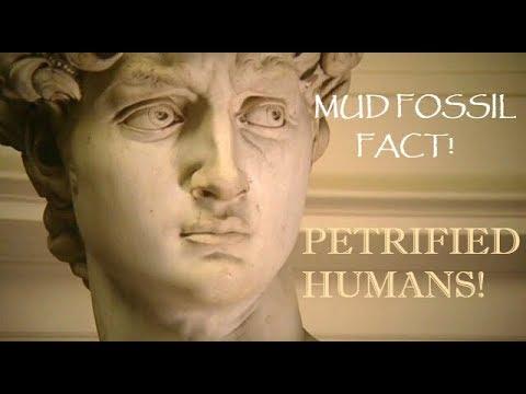 Mud Fossils: Petrified Humans!??
