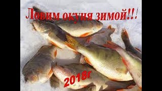 Поиск и ловля окуня зимой 2018!!! Уроки и сикреты ловли окуня!!!