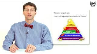 Обществознание. Урок 3 - Потребности, интересы, склонности. Деятельность.