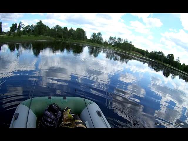 Заболоченное озеро 2