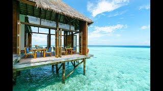 Туры на Мальдивы. Отель Conrad Maldives Rangali Island