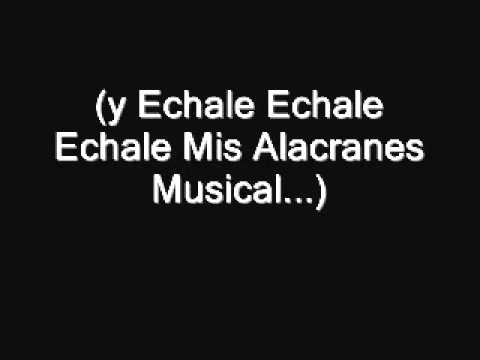 Alacranes Musical- Por Tu Amor (Lyrics)