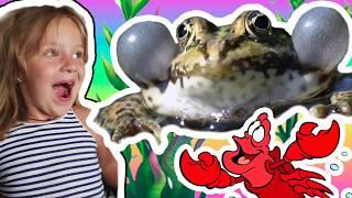 Crazy Frog Kids| Крейзи фрог на руках у детей Дети в ШОКЕ!!!