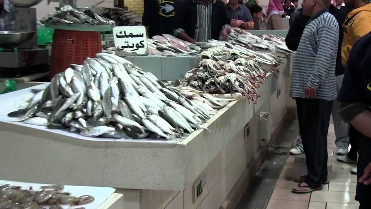 Fish market kuwait city 2011 youtube for City fish market