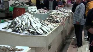 Fish Market Kuwait City 2011