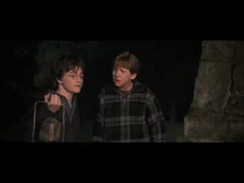 Harry potter e la camera dei segreti fandub seguite i for Camera dei