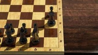 Командный турнир на Шахматной планете 1.02.2017
