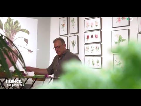 Vincent Jeannerot Aquarelles Botaniques Silence Ca Pousse 14