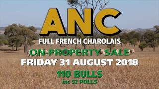 ANC Sale Introduction 2018