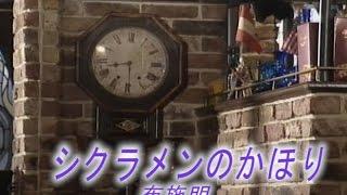 シクラメンのかほり (カラオケ) 布施明