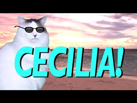 Happy Birthday Cecilia Epic Cat Happy Birthday Song