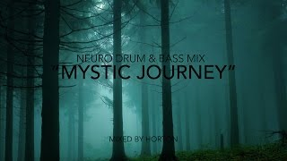 """Mystic Journey"" ~ Neurofunk Drum & Bass Mix"