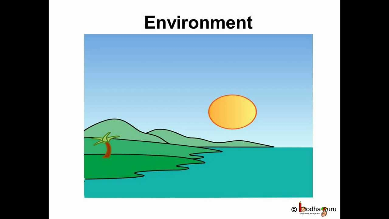 mini acid rain diagram [ 1280 x 720 Pixel ]