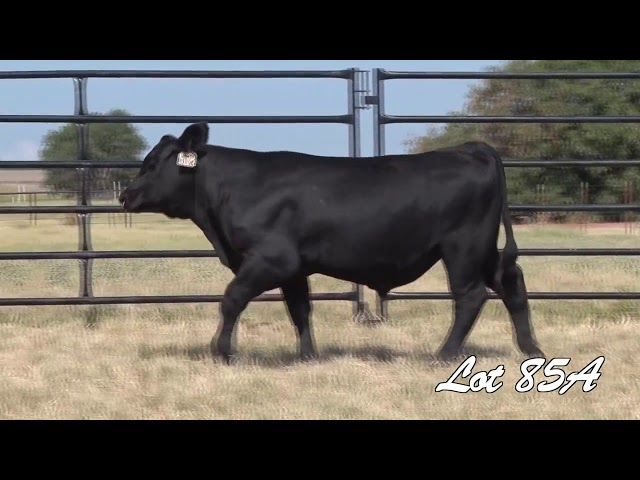 Pollard Farms Lot 85A