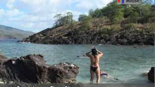 Guadeloupe: ilets Pigeon (travel clip)