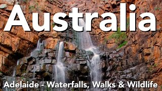 Australia - Adelaide - Waterfalls, Walks & Wildlife
