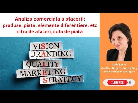 Analiza comerciala a firmei - Repere generale (Anda Racsa)