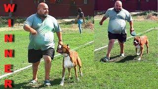 Трудно стать Чемпионом на выставке собак. IIt's hard to become a Champion at an exhibition of dogs.