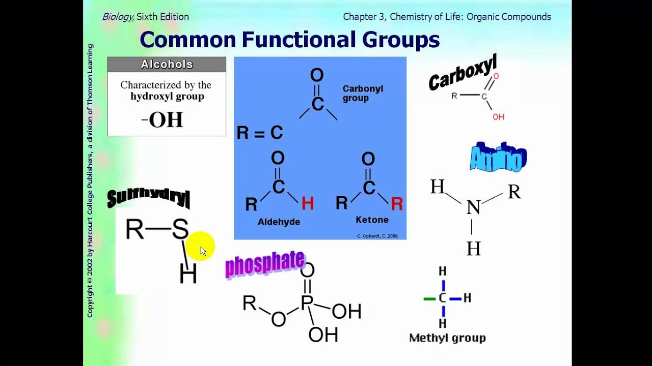 functional groups Functional group definition, a group of atoms responsible for the characteristic behavior of the class of compounds in which the group occurs, as the hydroxyl group in alcohols.