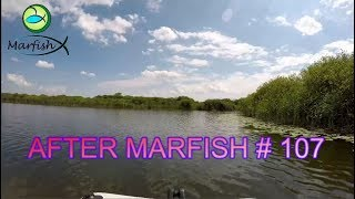 After Marfish # 107 Pierwszy w 2019 r. Rekordy Marfisha, Liga Marfisha Live chat.