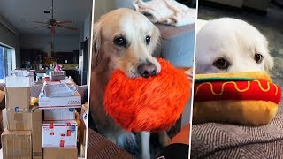 HUGE BOXES & TOYS! (Fan Mail Opening) - Super Cooper Sunday #167