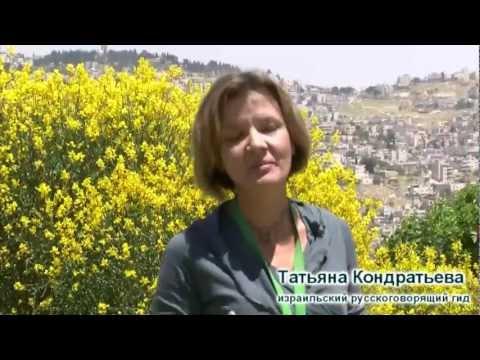 гид в Израиле - Татьяна Кондратьева (Tatiana Kondratieva)