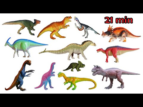 Dinosaur Species Collection - Triassic, Jurassic & Cretaceous - The Kids