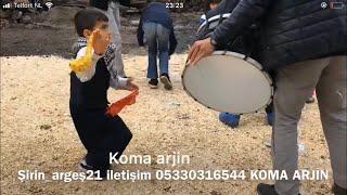 Küçük çocuk Diyarbakır halayı izlemelisin