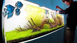 70 neue Tiere im XXL Aquarium! 😲
