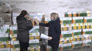 Специалисты Россельхознадзора проверяют заграничных поставщиков семян