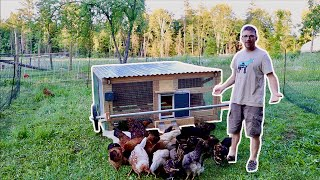 CHICKENS Move into their NEW AUTOMATIC Chicken Coop