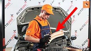 Hvordan og hvornår skifte Luftfilter PEUGEOT 206 Hatchback (2A/C): videovejledning